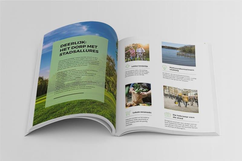 CAMELIA brochure
